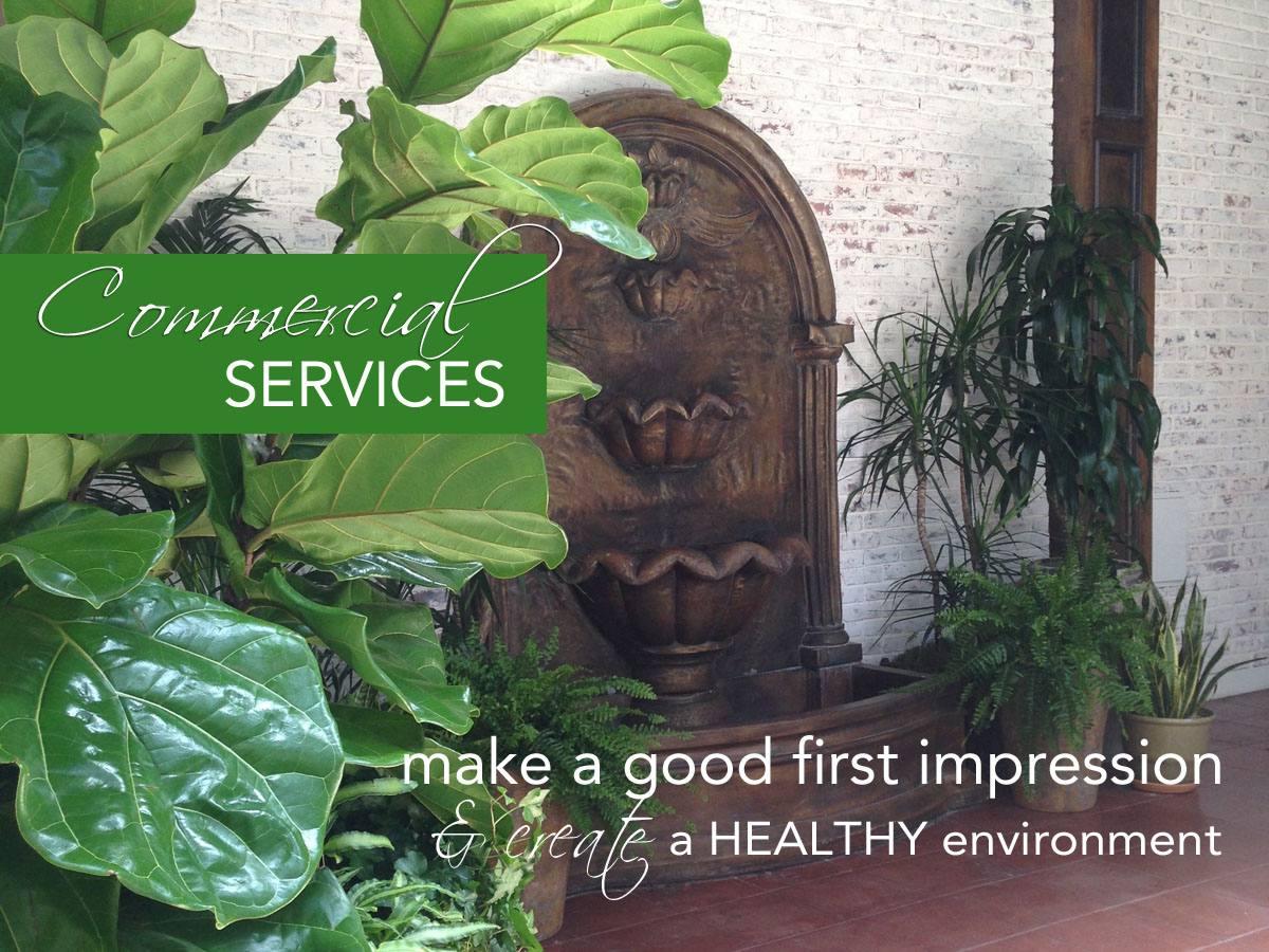 professional services office plants, plantscapes, design maintenance