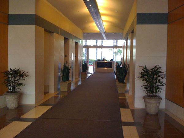commercial property indoor plant arrangement