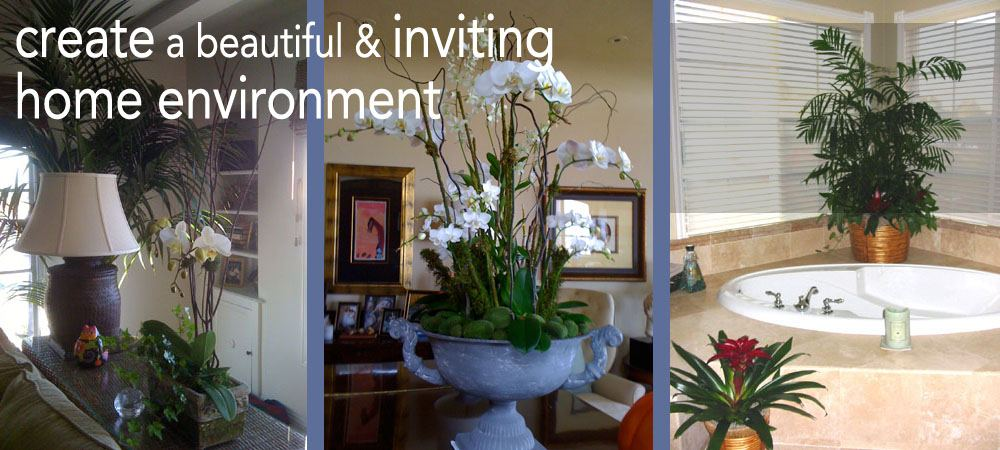 residential, home plants design services