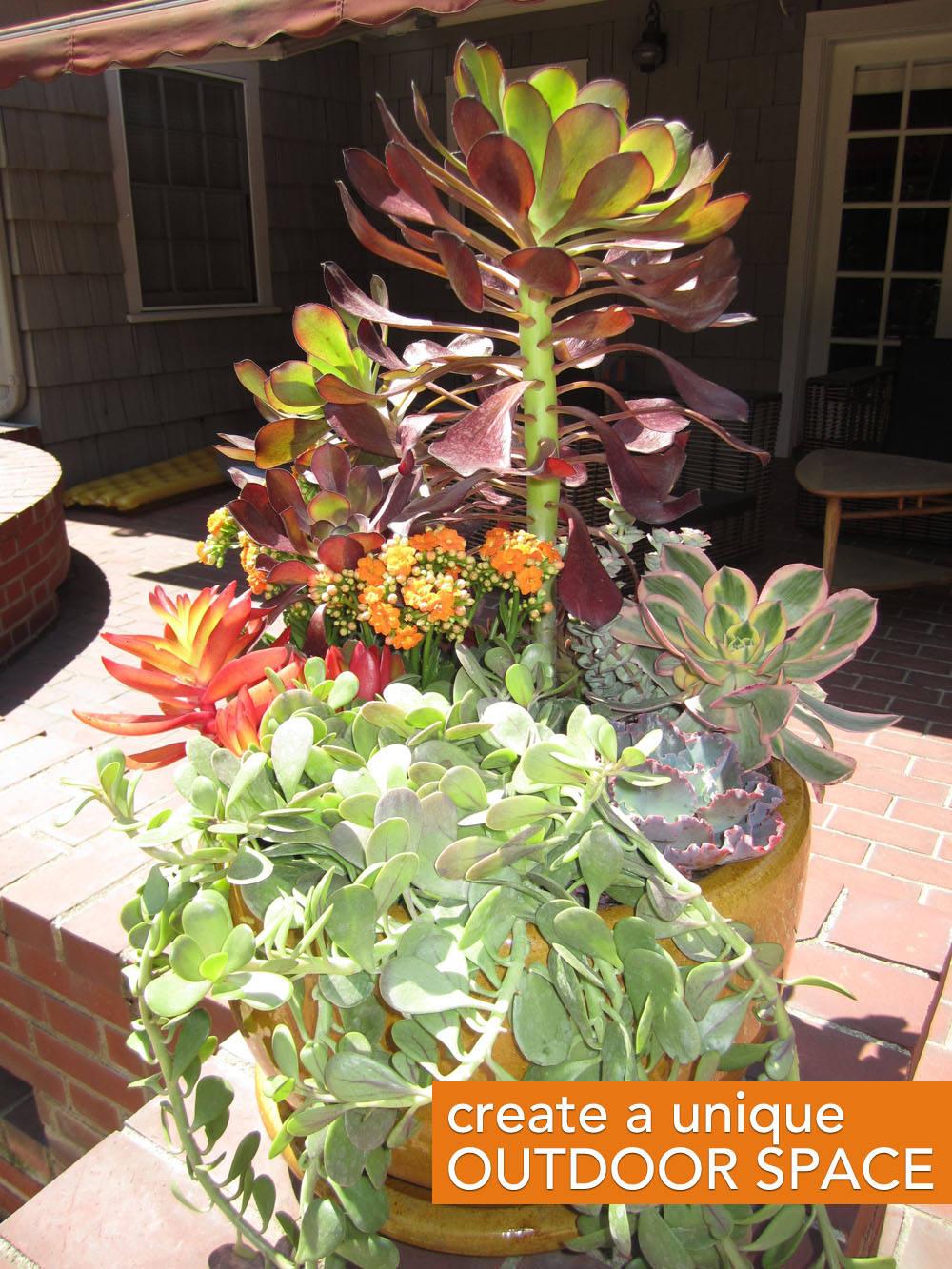 botanicals, outdoor plants, plantscapes, balcony plants