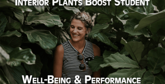 Student Health and Performance Benefits with Interior Plantscaping